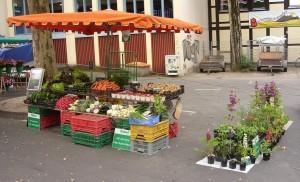 Unser Wochenmarktstand im Frühjahr